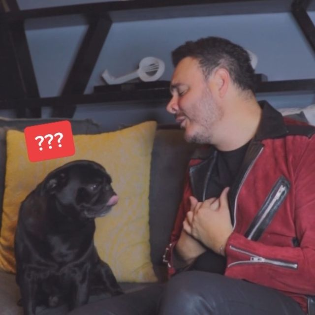 Cuando le pones todo el feeling a #MiMayorAnhelo y aún así se van 🥺🤣🤣🤣 #Reels #dogsofinstagram #fun